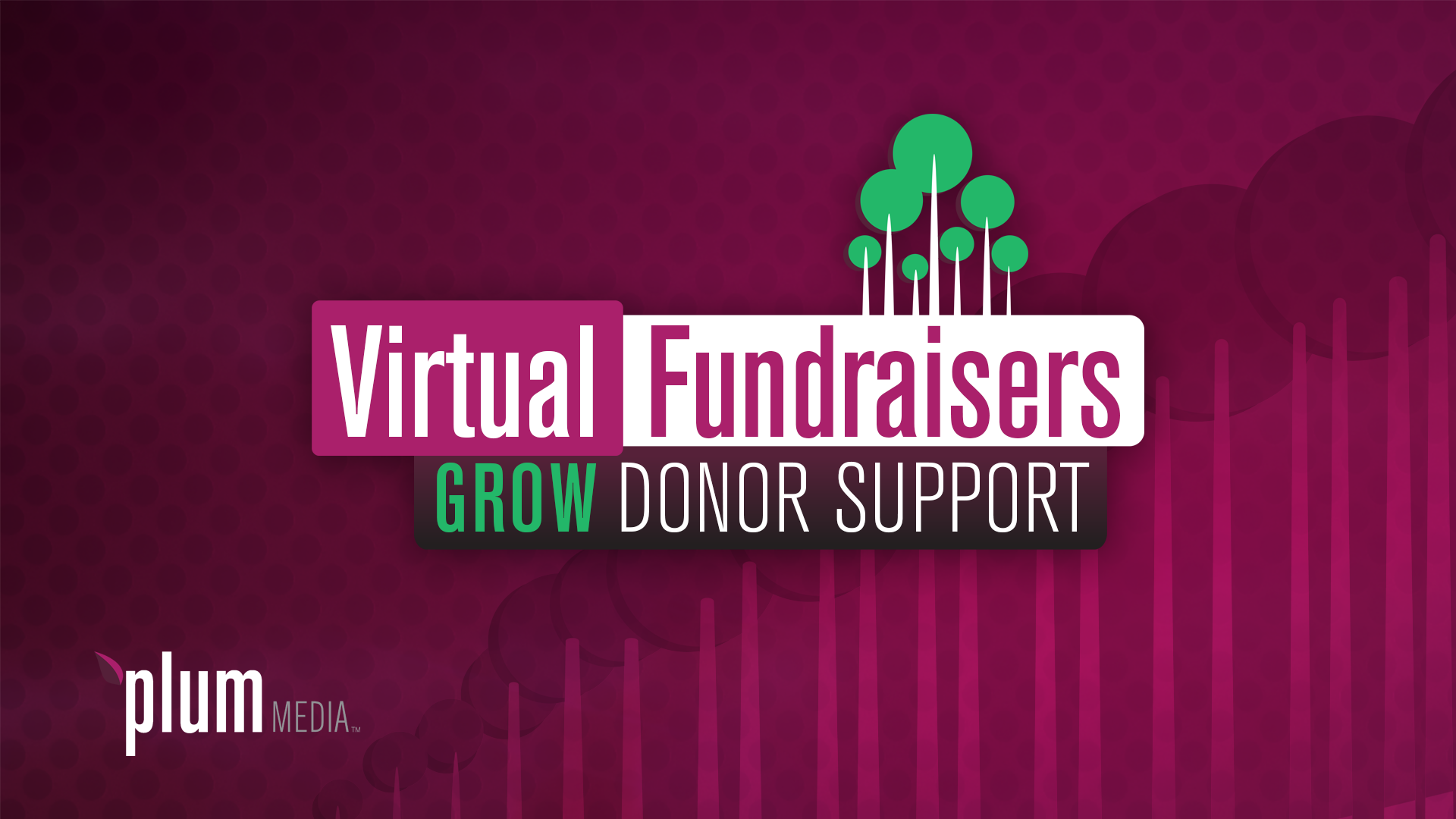 Virtual Fundraisers Grow Donor Support